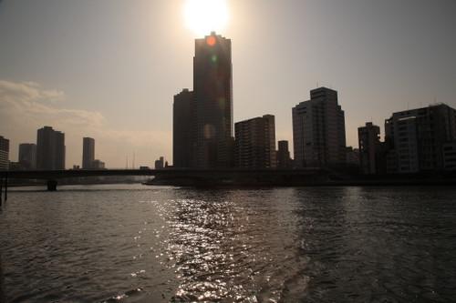 ⑲佃島からの聖路加タワー